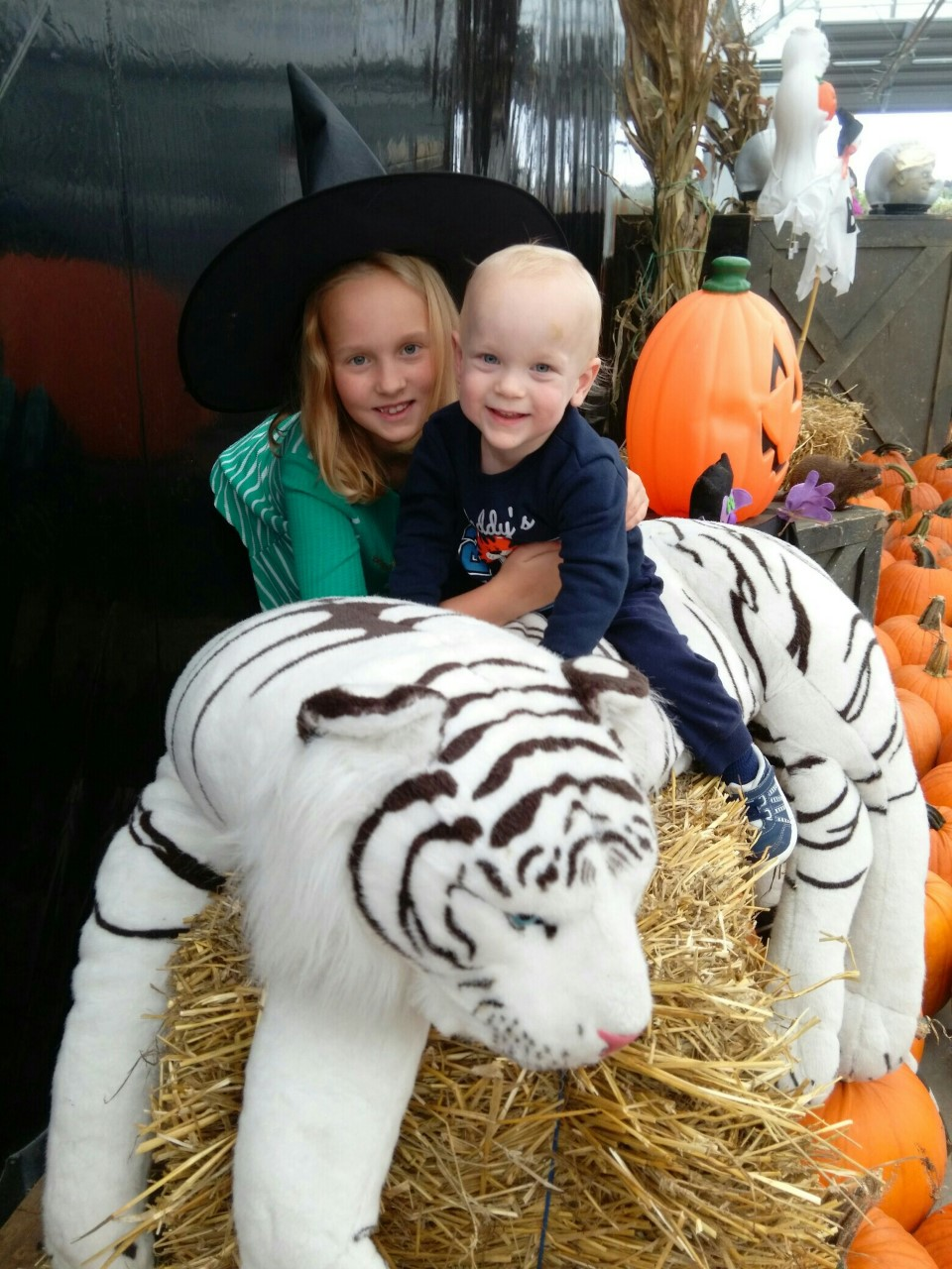 Dresser family children boy and girl playing on hay bail and stuffed tiger at halloween event